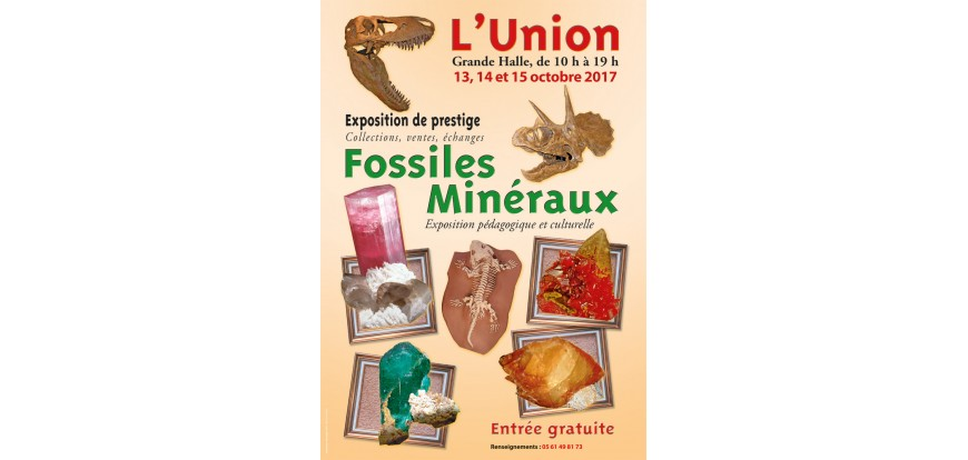 Bourse minerals and fossils of L'Union Toulouse